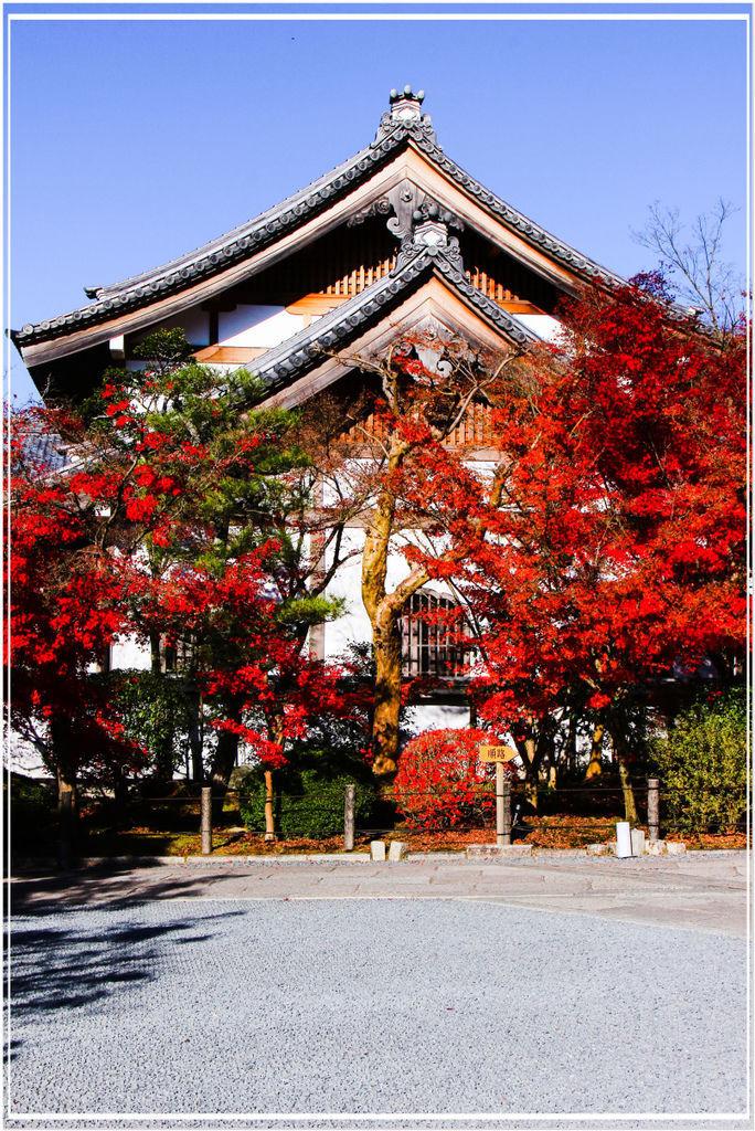 20151207BA永觀堂313-1