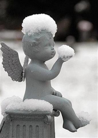 履霜,堅冰至.jpg