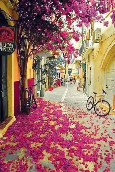 The colorful streets of Corfu, Greece.jpg