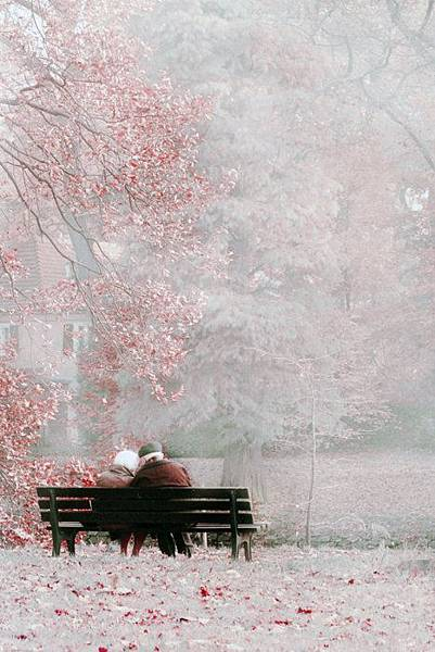 romantic love.jpg
