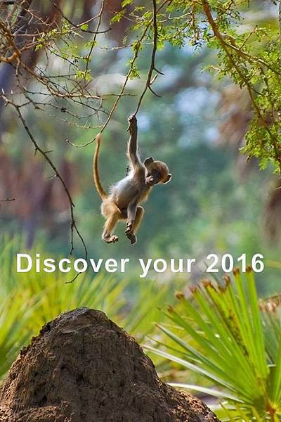 Discover your 2016.jpg