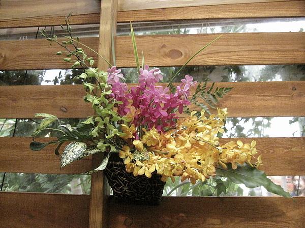 2010Taipei Flora Expo 263.JPG