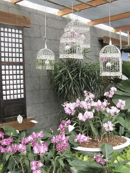 2010Taipei Flora Expo 207.JPG
