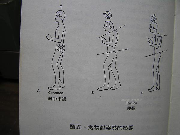 P1010001(飲食、情緒與個性).JPG