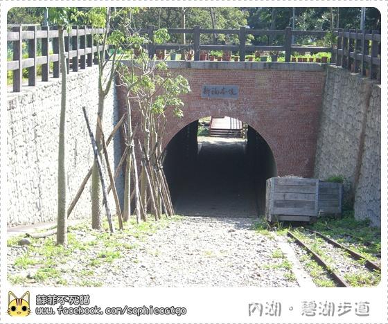 碧湖步道橫CIMG1209-5.JPG
