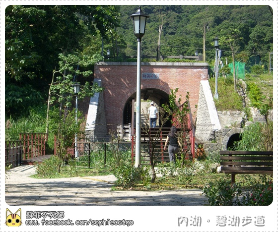 碧湖步道橫CIMG1210-6.JPG