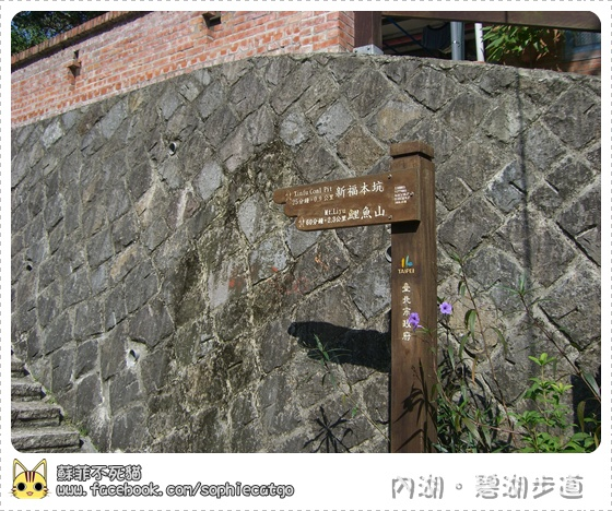 碧湖步道橫CIMG1205-3.JPG