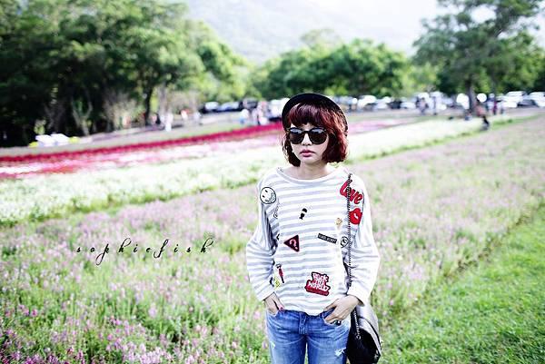 HN3A4208.jpg