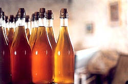 bouteilles1.jpg