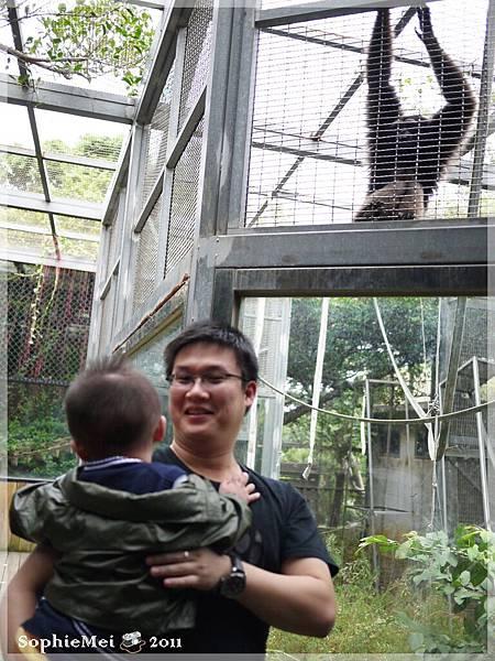 2Y-初訪動物園07.JPG