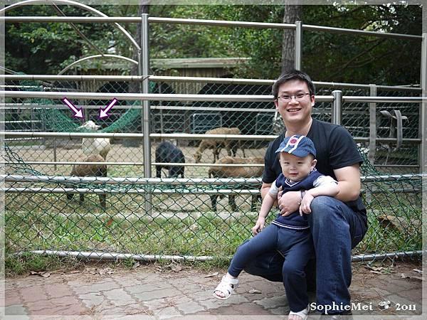 2Y-初訪動物園06.JPG