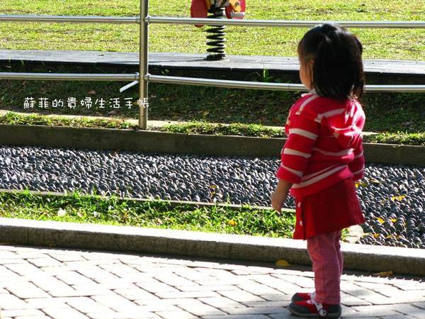 IMG_6337-1.jpg