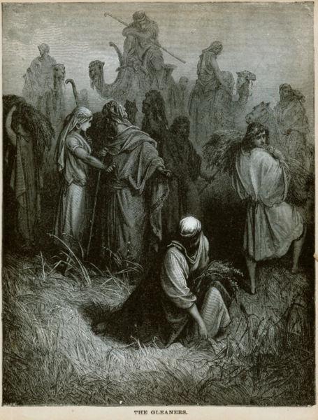 拾穗The Gleaners_德里 Gustave Dore.jpg