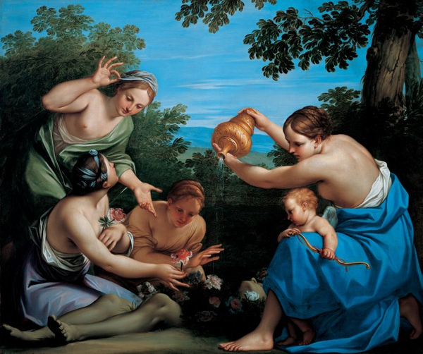 維納斯膏立阿多尼斯Venus anointing the Dead Adonis_法蘭契斯基尼 Franceschini, Marcantonio,列支敦士登博物館維也納 Liechtenstein Museum Vienna.jpg