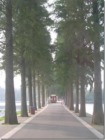 200807長江三峽 159