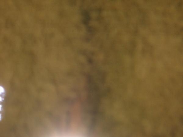 081128A013.JPG