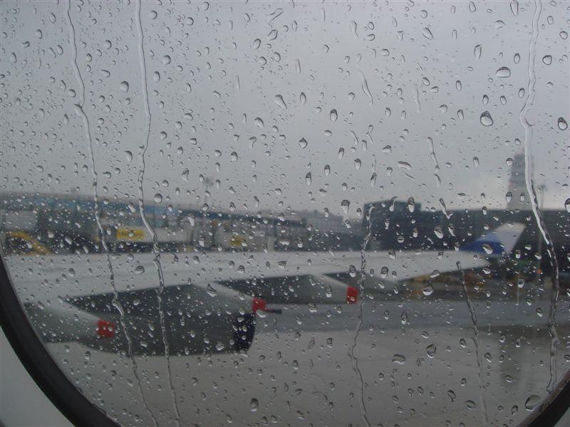 下雨的維也納
