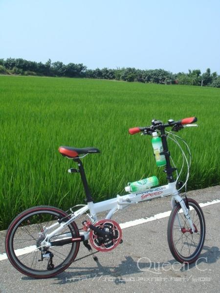 San Zhi_028.jpg