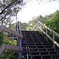 登上陽明大學體育場的階梯.jpg