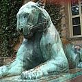 Princeton University_001.jpg