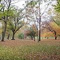 Public Garden.jpg