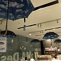 MoMo design store