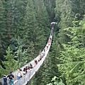 世界上最長的吊橋.jpg