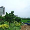 縱貫線往竹北方向