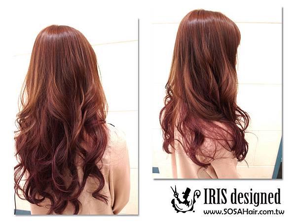 Iris_3