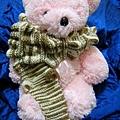 2009-11-18 18-15-24_0007.jpg