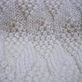 2009-11-18 18-15-33_0032.jpg
