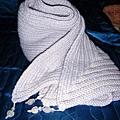 2009-11-18 18-15-35_0040.jpg