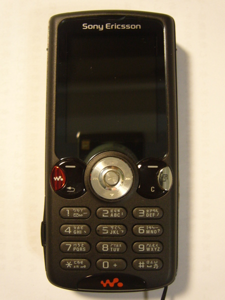 P1110995.JPG