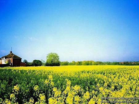 England_Travel_00499_63