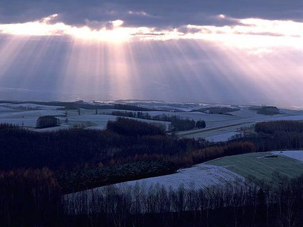 曳灑的日光.jpg