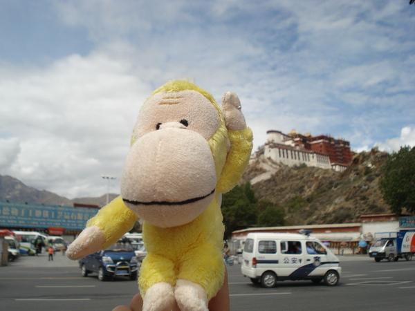 布達拉宮 (5) 小猴你也來玩ㄚ.JPG