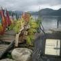 南怡島共和國-碼頭的人魚公主