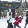 冬天來韓國其實也很棒