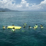 布那肯國家海洋公園 (6) 不會游泳的人下水也很安全.jpg