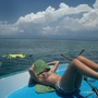 布那肯國家海洋公園 (8) 做日光浴的做日光浴.JPG