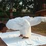 北方邦 UTTAR PRADESH阿格拉 Agra飯店及其他Clarks Shiraz 瑜珈大師大絕招.JPG