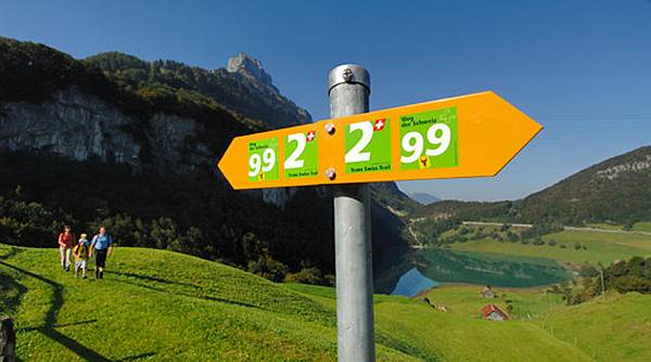 nr2_trans_swiss_trail_gr.jpg