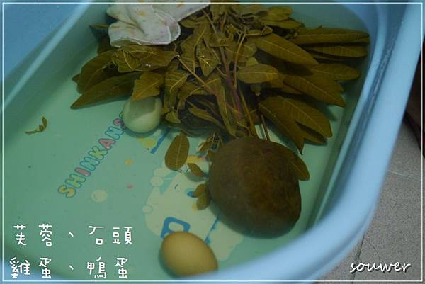P1230020準備:芙蓉、雞蛋、鴨蛋、又圓又硬的石頭.JPG