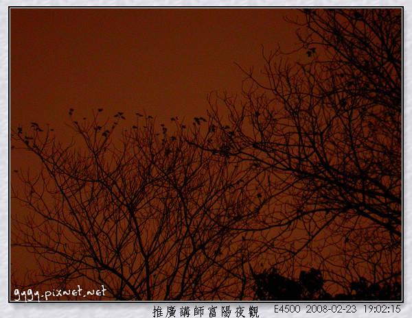 富陽夜觀167.jpg