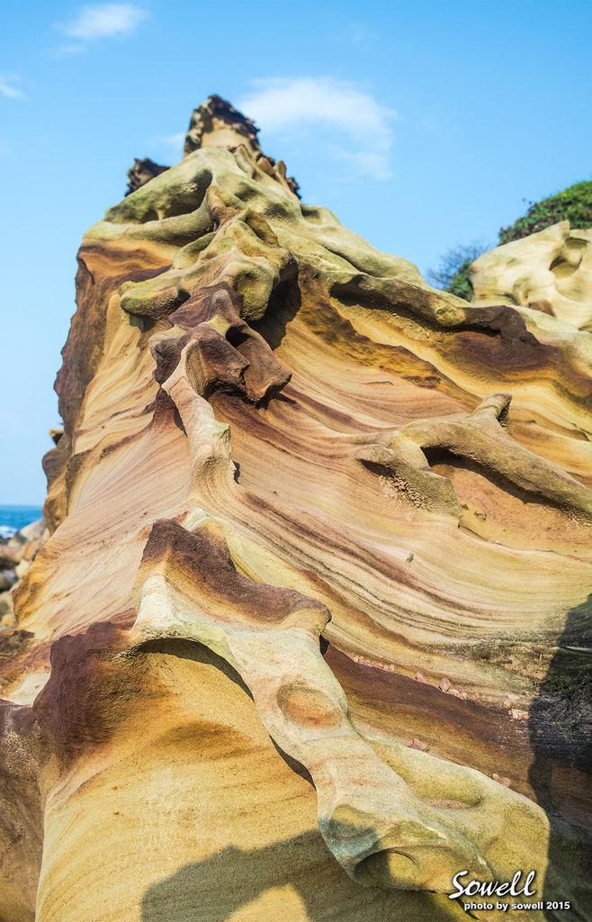 大埔層砂岩