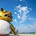 生氣的獅子SWY_9778.jpg