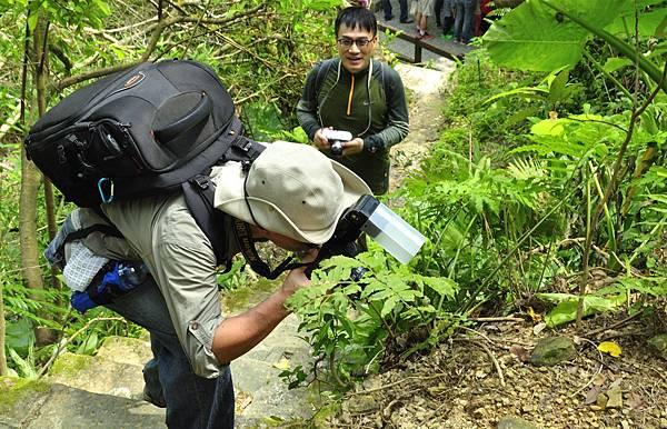 富陽公園生態攝影-Jason_680.jpg