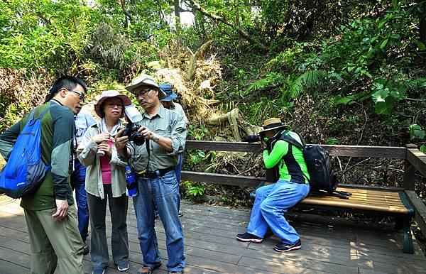 富陽公園生態攝影-Jason_7124.jpg