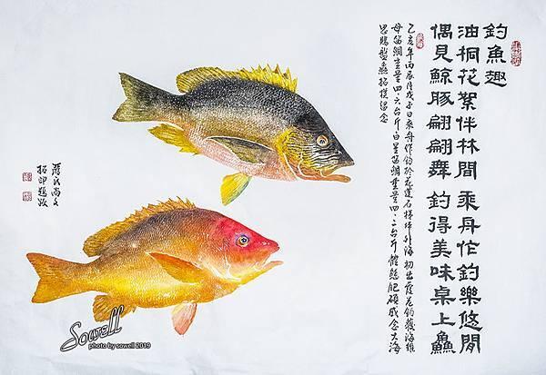 海雞母與白星笛鯛魚拓 20190617.jpg