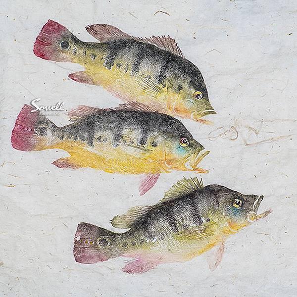 皇冠三間魚拓 (細麻紙).jpg